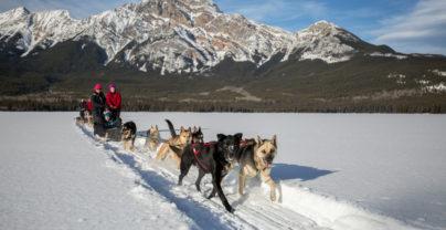 Ski & Winter in Jasper National Park