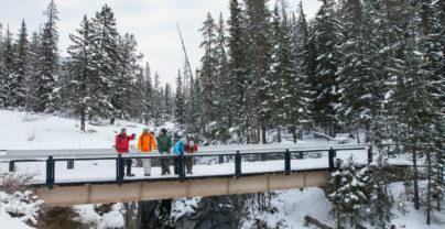Winters avontuur Edmonton & Jasper
